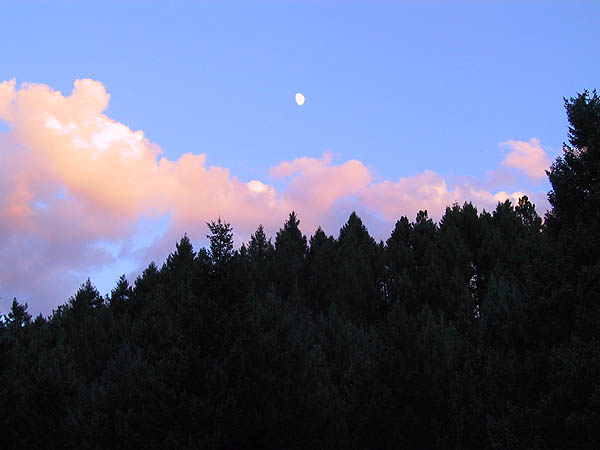 Apex Park: Moonrise