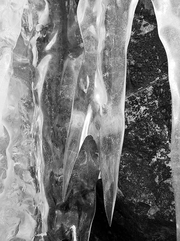 Lincoln Falls 2002: Forked Icicle B_W